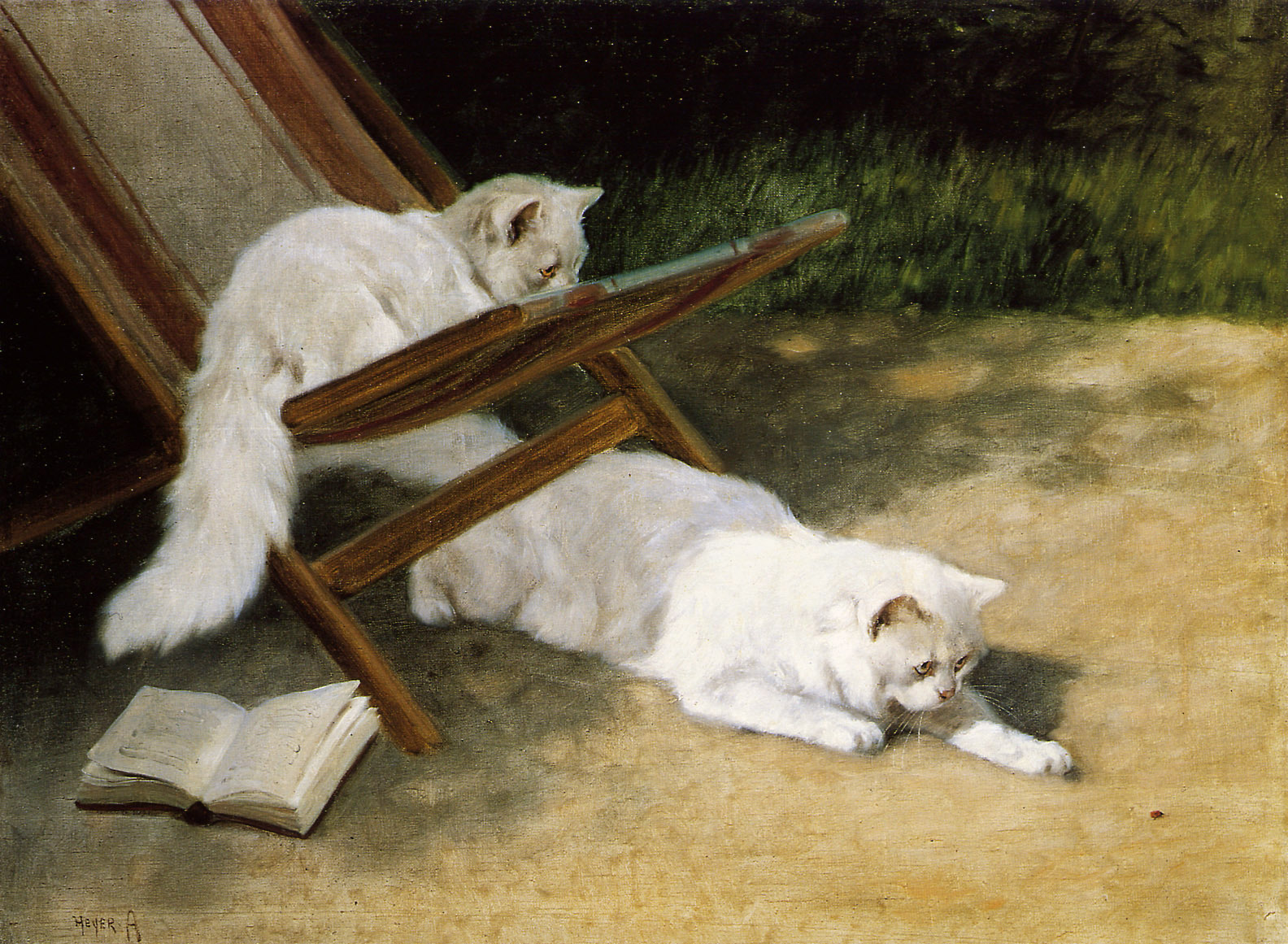 Heyer-Arthur-Persian-cats-Sun-private-collection